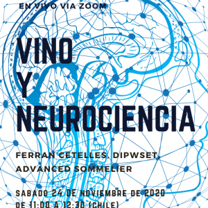 VINO Y NEUROCIENCIA – ZOOM